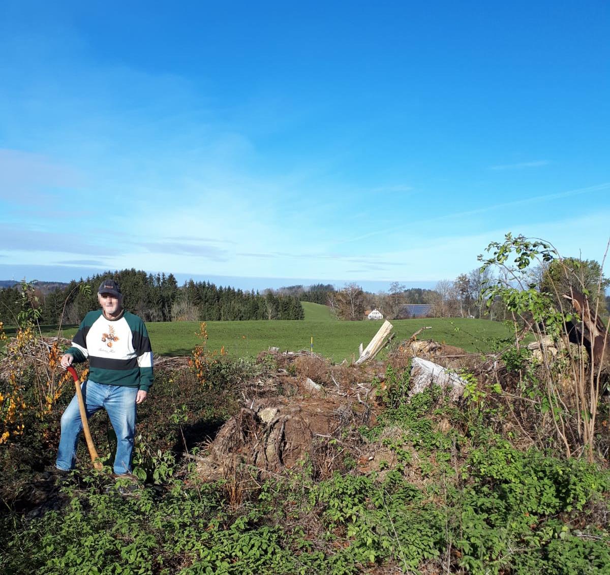 Planting trees in Niemandsfreund